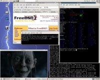MPlayer on FreeBSD